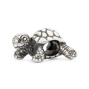 African Tortoise Bead