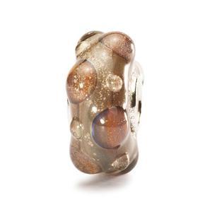 Fossils Bead