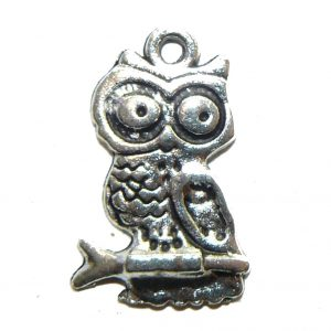Wide Eyed Owl Metal Charm